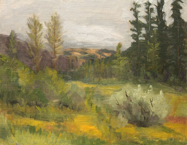 """Chapman Meadow"" original fine art by Jane Frederick"