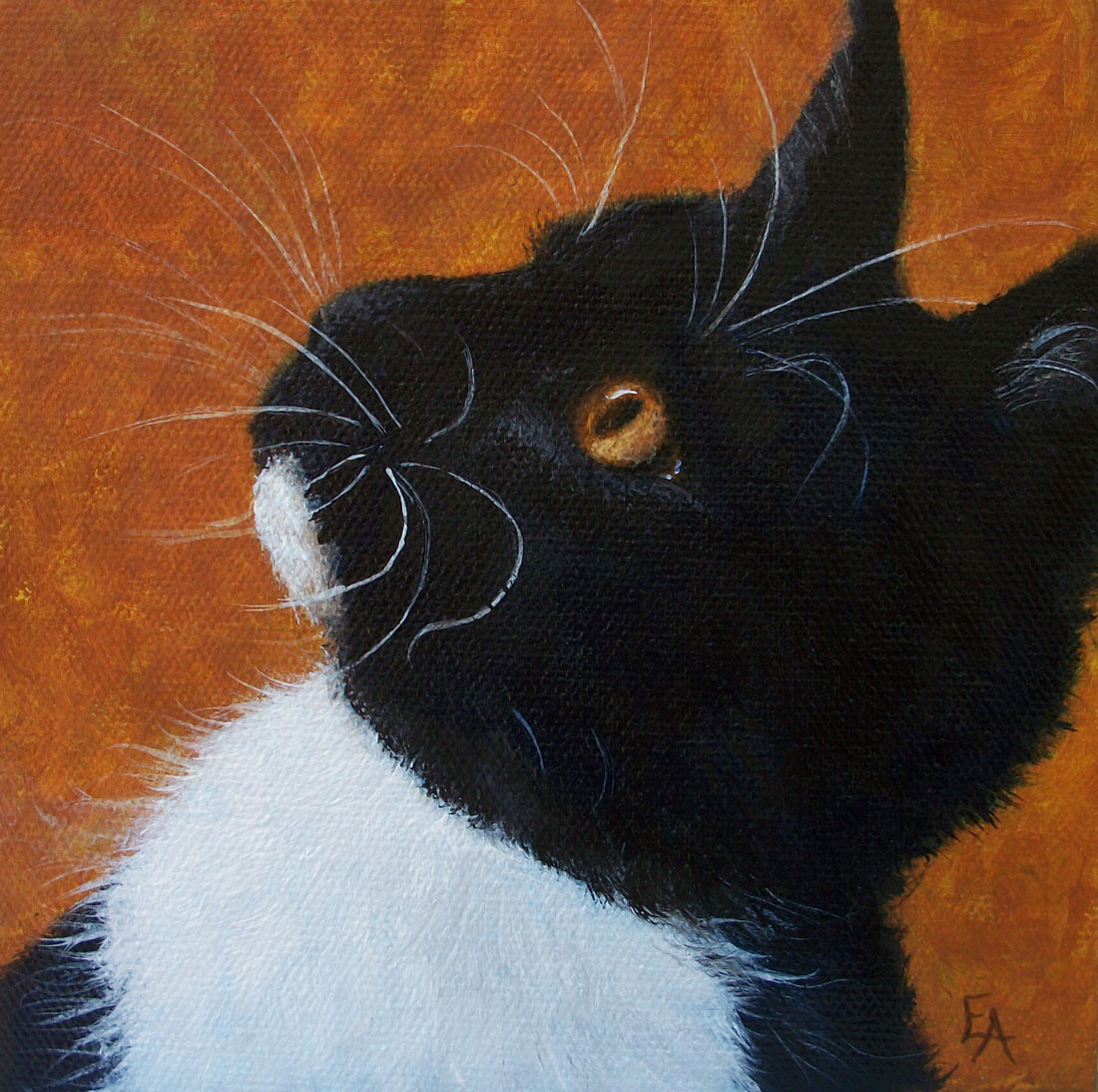 """Wild Whiskers"" original fine art by Elizabeth Elgin"