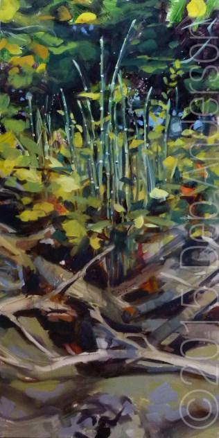 """Oil Painting: Horsetail"" original fine art by Deb Anderson"