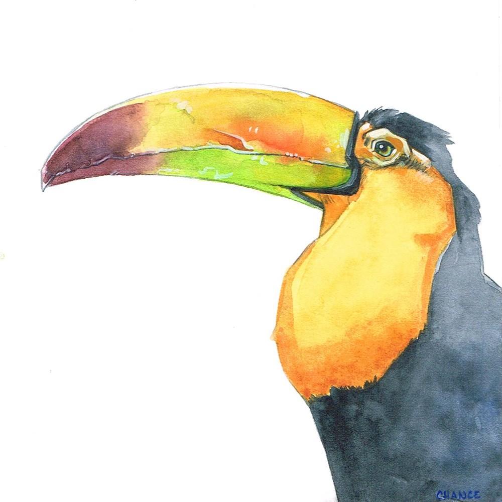 """Toucan"" original fine art by Annabel Chance"