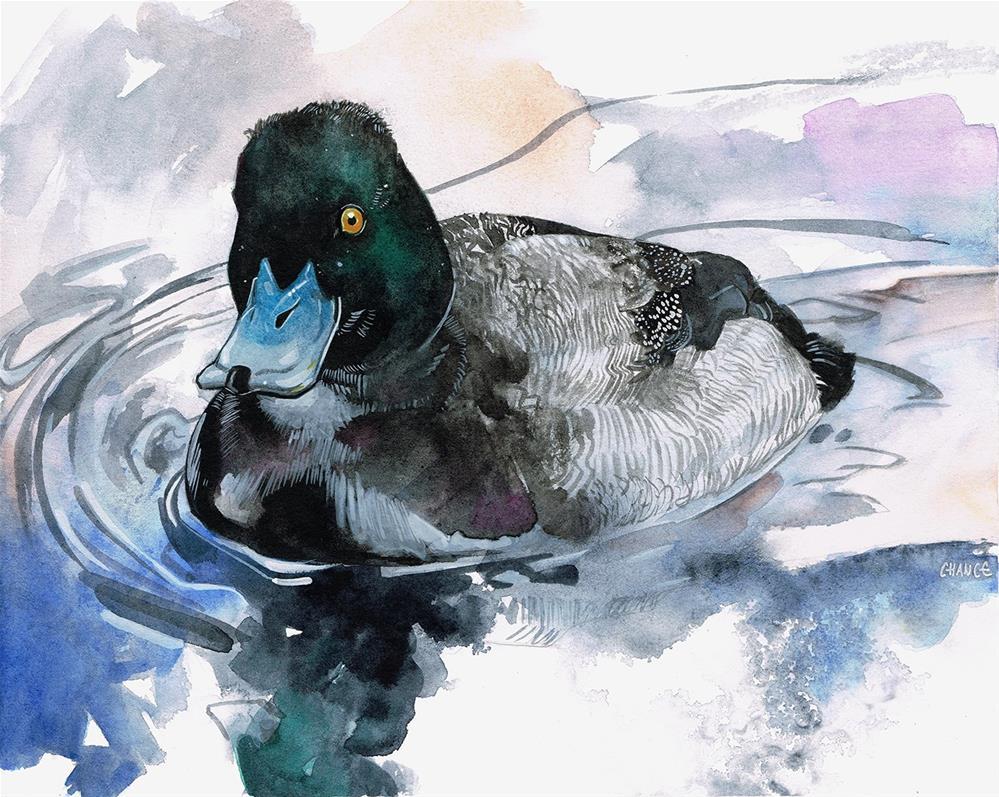 """""""Bluebill"""" original fine art by Annabel Chance"""