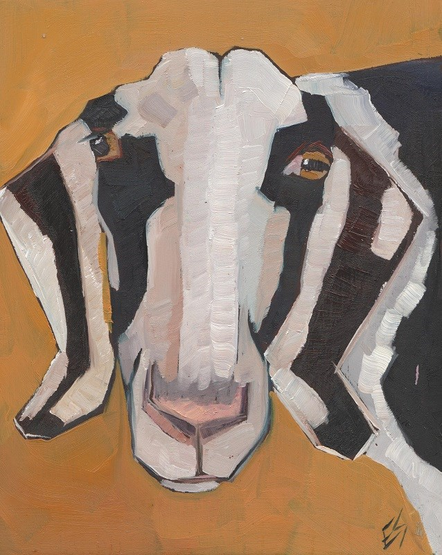 """Goat Face"" original fine art by Elizabeth See"