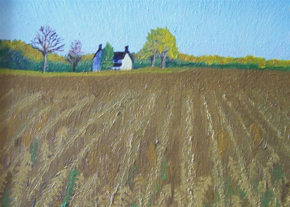 """""""Soybeans"""" original fine art by Elaine Shortall"""