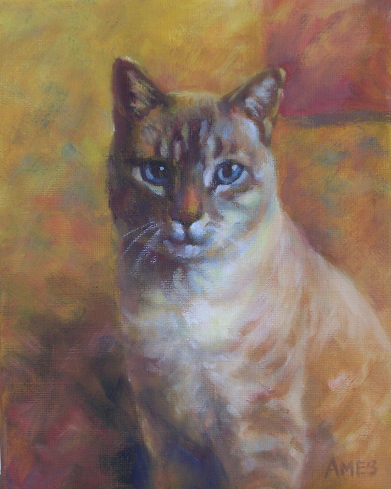 """Vinny"" original fine art by Debra Ames"
