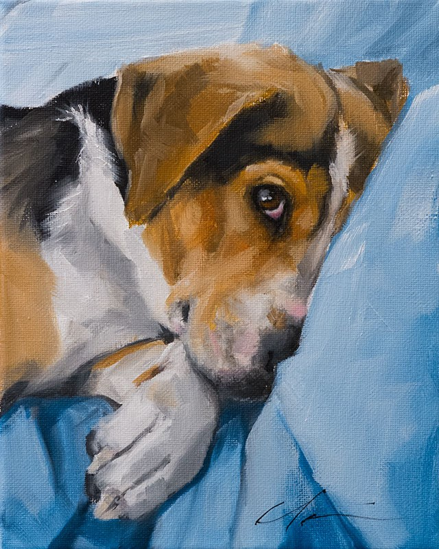 """PAINT MY DOG - Alex"" original fine art by Clair Hartmann"