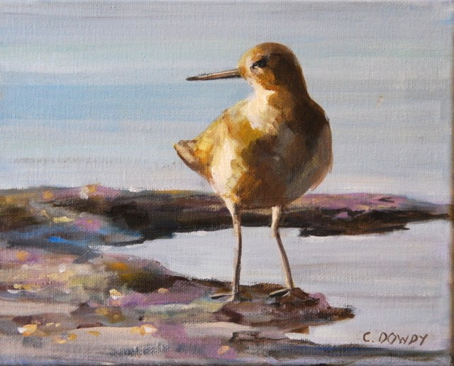 """Sandpiper 2"" original fine art by Christina Dowdy"