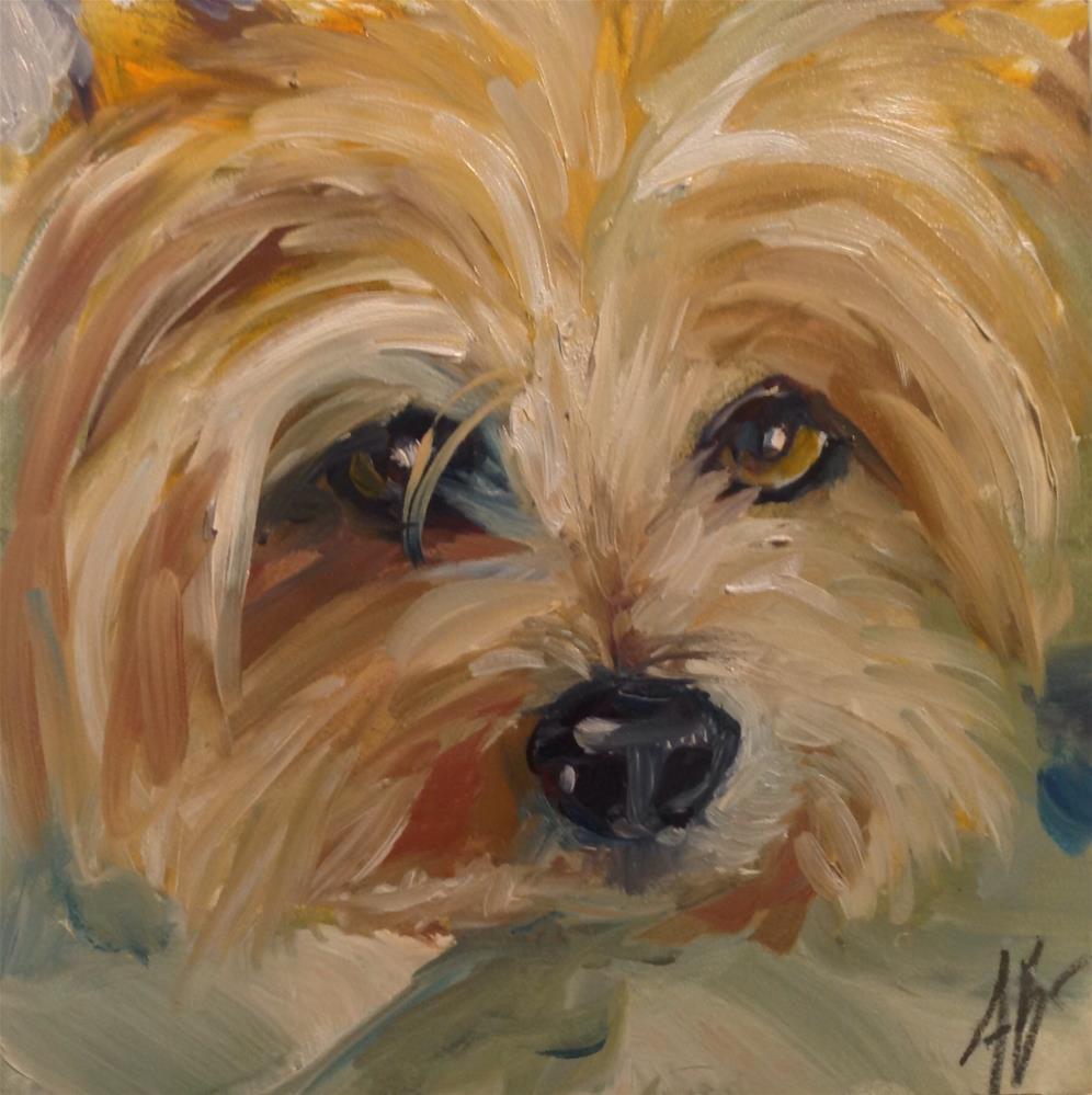 """""""Sweet Yorkie face"""" original fine art by Annette Balesteri"""
