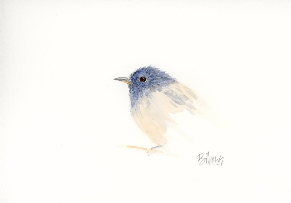 """Flycatcher Study I"" original fine art by Susanne Billings"