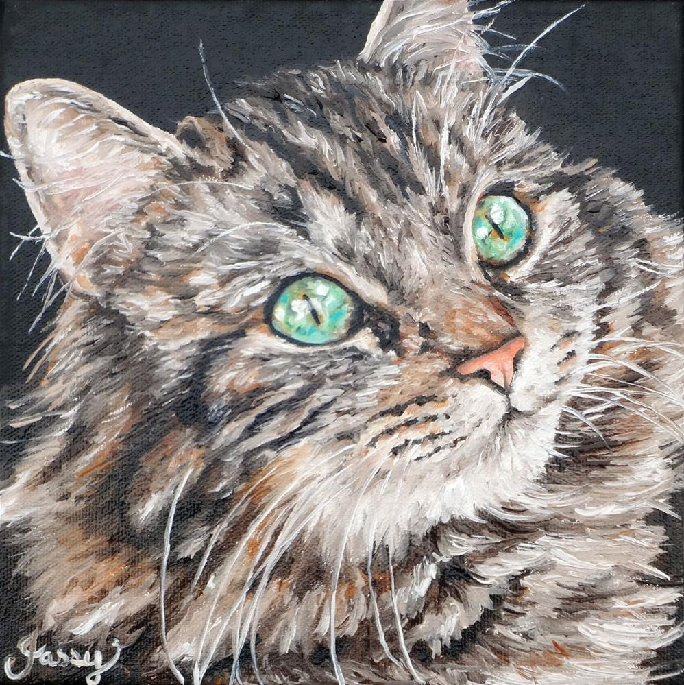 """Stray cat"" original fine art by Jacinthe Rivard"