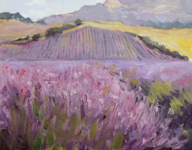 """Rolling Fields of Lavender"" original fine art by Deborah Newman"