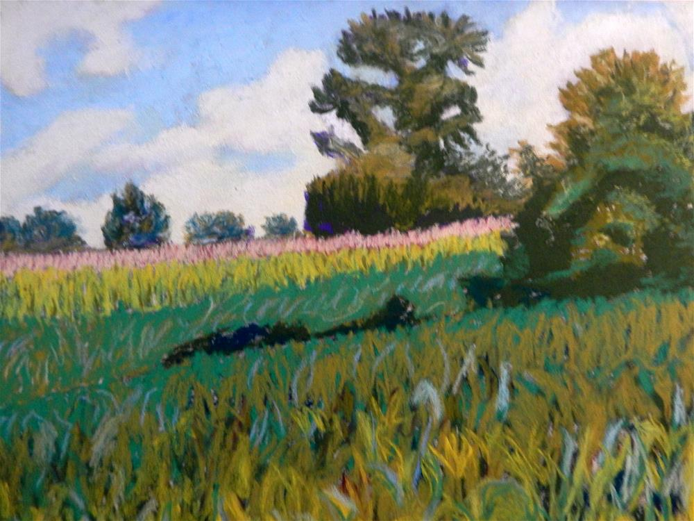 """View of Cornfield at October Farm"" original fine art by Elaine Shortall"