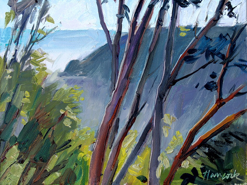 """Madronas and Late Sun"" original fine art by Gretchen Hancock"