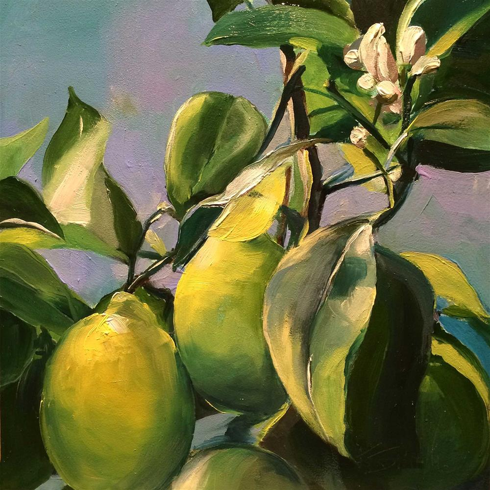 """Meyer Lemons"" original fine art by Kim Smith"