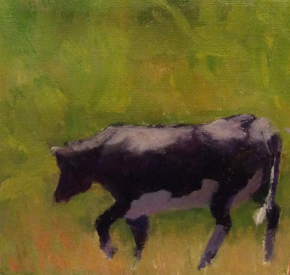 """Black cow with white socks and tummy"" original fine art by Debbie Dowdle"