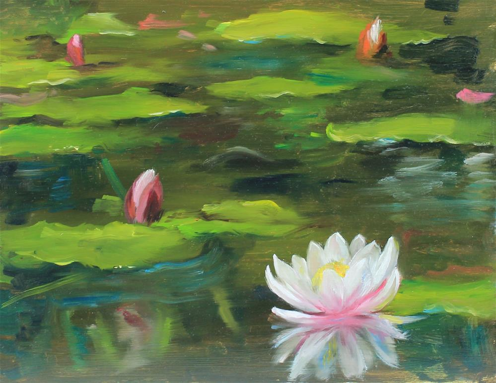 """waterlily pond"" original fine art by Marco Vazquez"