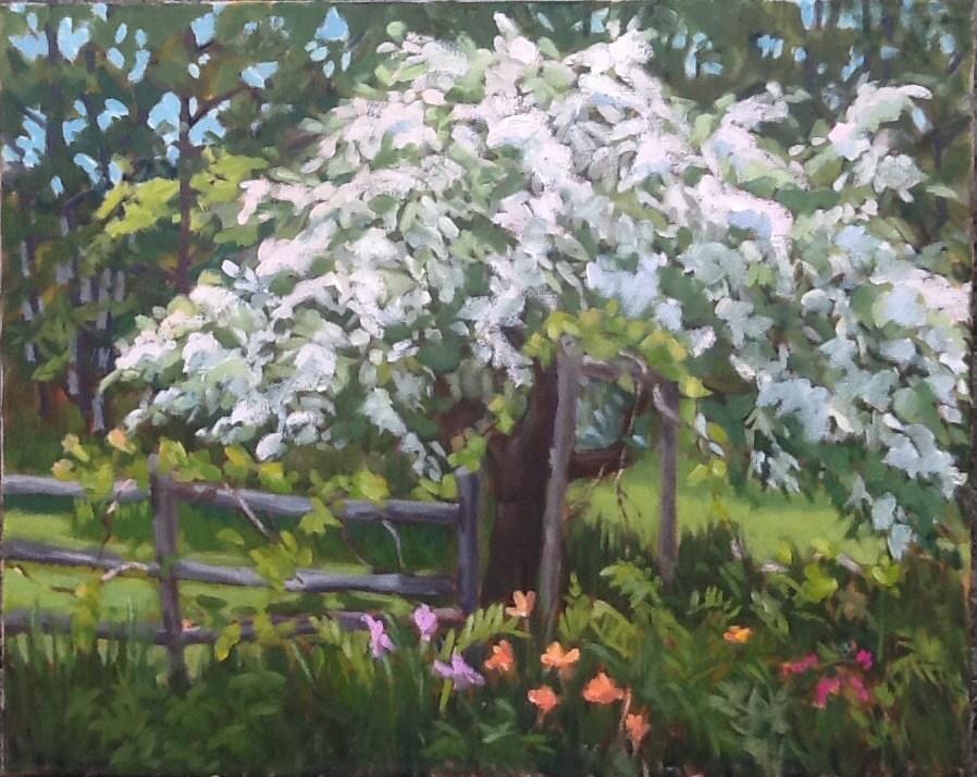 """A Good Year for Apples"" original fine art by Elizabeth Bish"