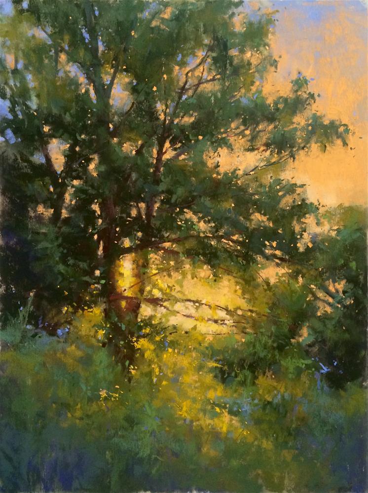 """""""Warm Glow"""" original fine art by Jacob Aguiar"""