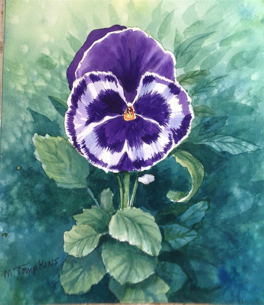 """Pansy Pansy"" original fine art by Mark Tompkins"
