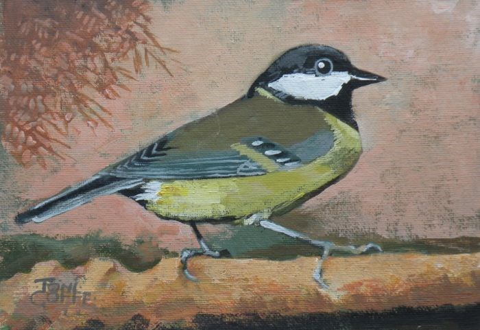 """Bluetit"" original fine art by Toni Goffe"
