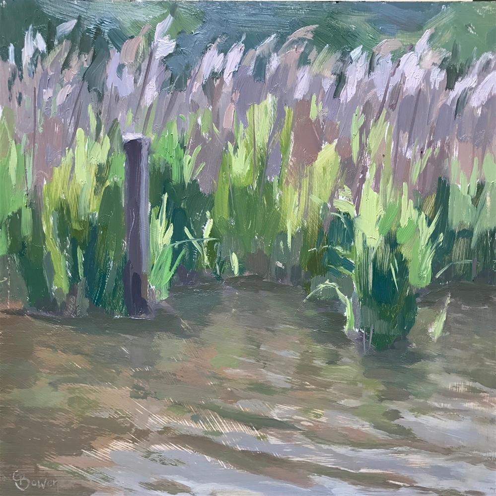 """""""Frensham Little Pond"""" original fine art by Clare Bowen"""