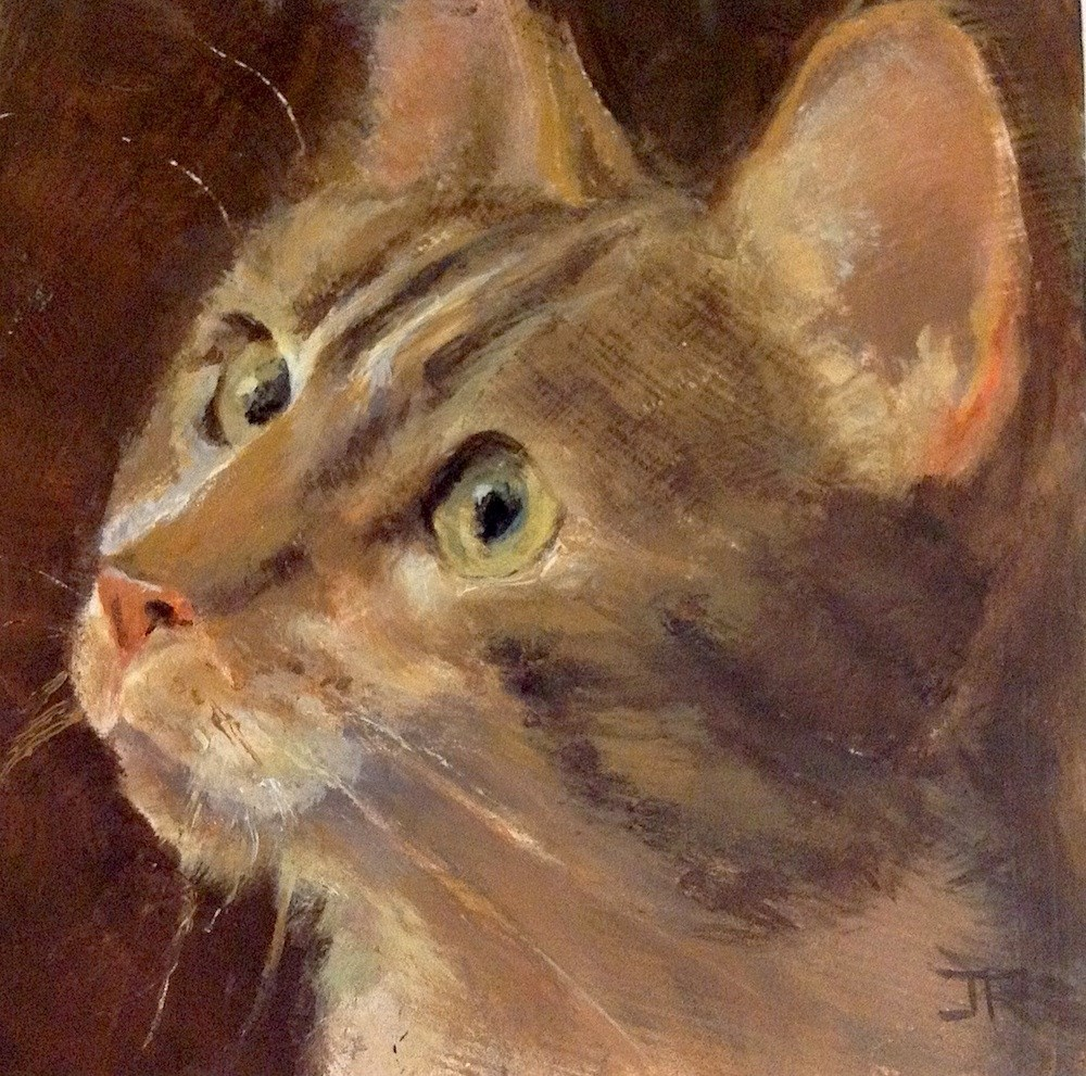 """Curiosity"" original fine art by June Rollins"