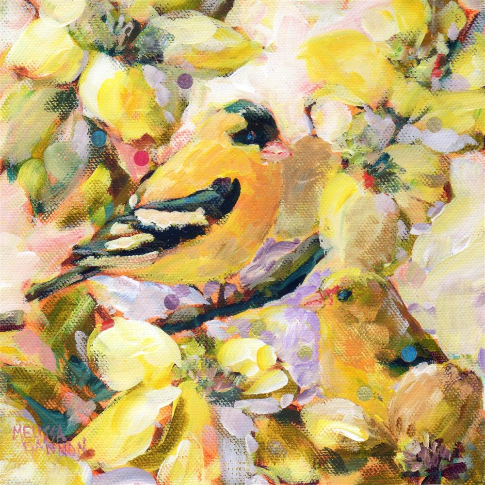 """Springtime Goldfinch"" original fine art by Melissa Gannon"