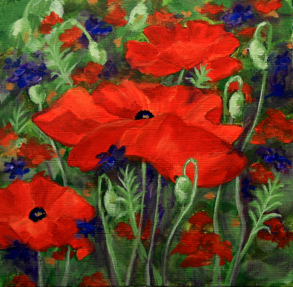 """Red Poppies"" original fine art by Jean Nelson"