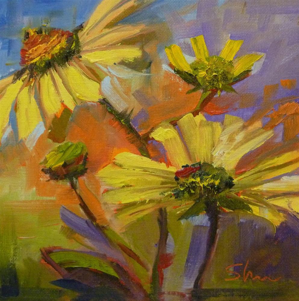 """Brittlebush"" original fine art by Shawn Deitch"