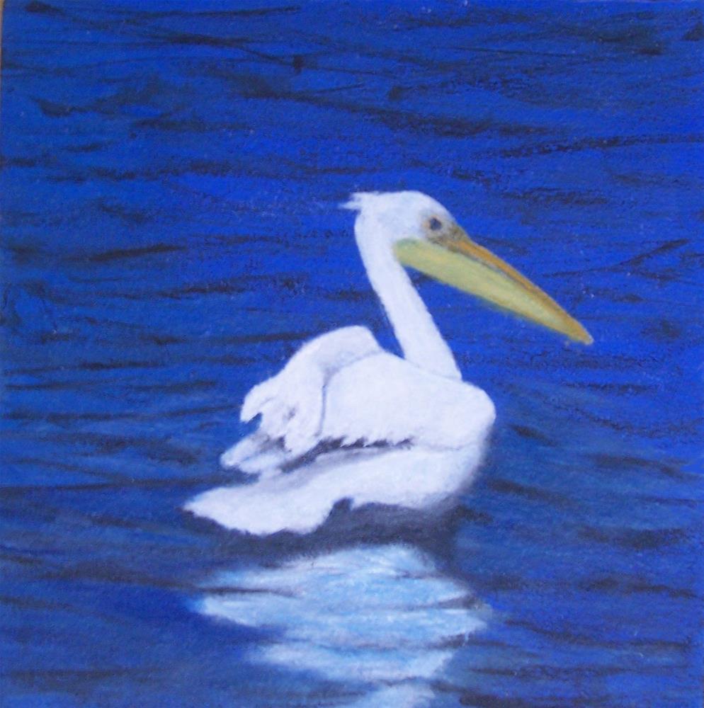 """""""Lone Pelican"""" original fine art by John Marcum"""