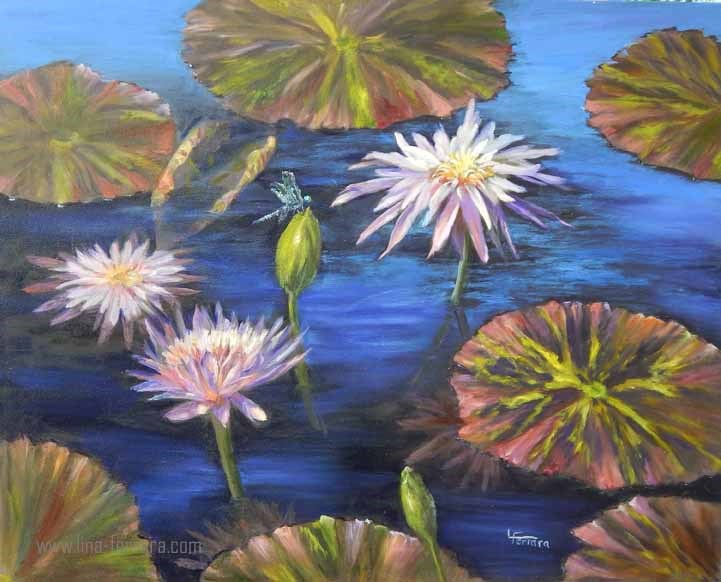"""Waterlilies of Longwood Garden"" original fine art by Lina Ferrara"