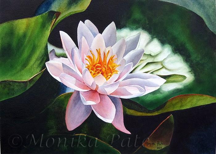 """Water Lily"" original fine art by Monika Pate"