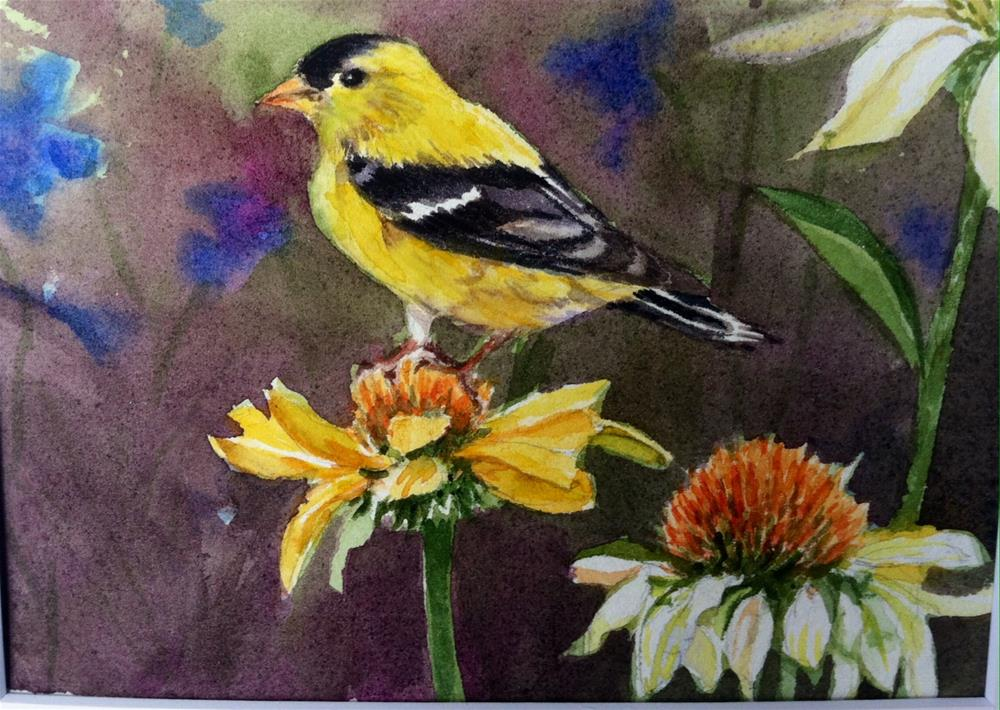 """Yellow finch on Coneflower"" original fine art by Kathryn Kittell"