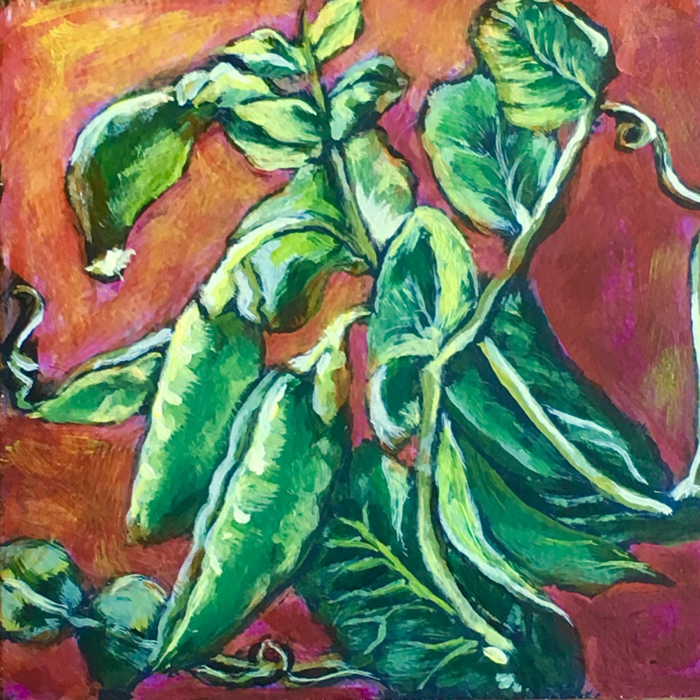 """Summer Peas"" original fine art by Colleen OHair"