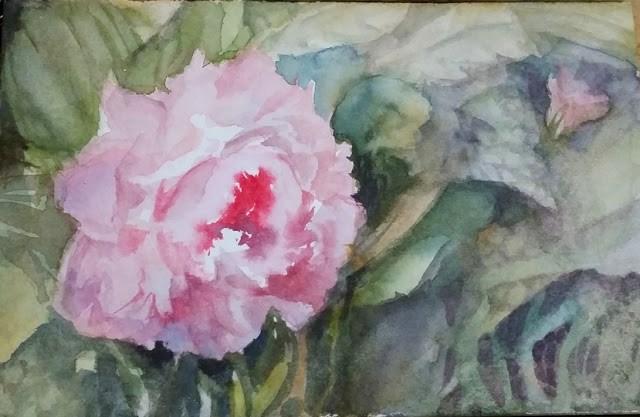 """Lovely Peony"" original fine art by Wendy Starita"