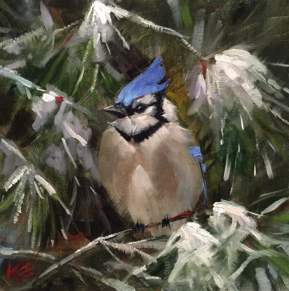 """Blue Jay - white Christmas"" original fine art by Krista Eaton"