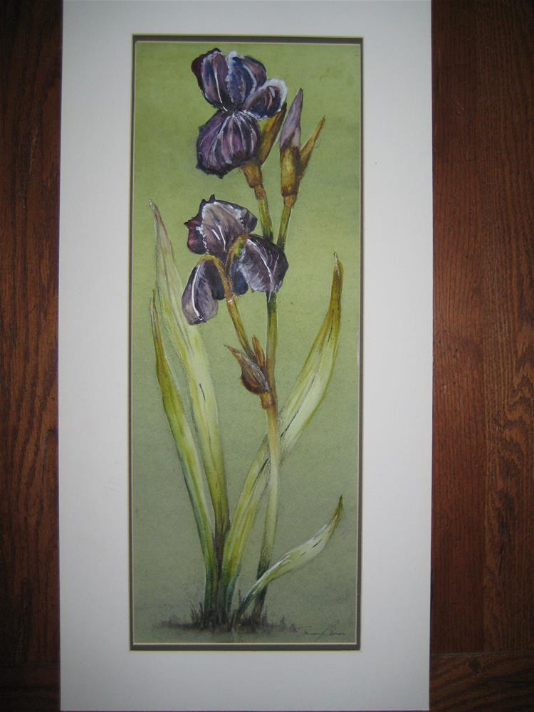 """Iris"" original fine art by Susan Brens"