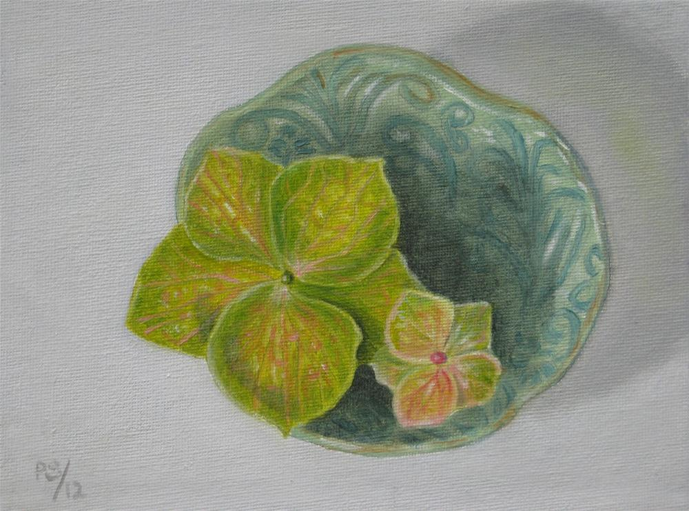 """Green Hydrangia"" original fine art by Pera Schillings"