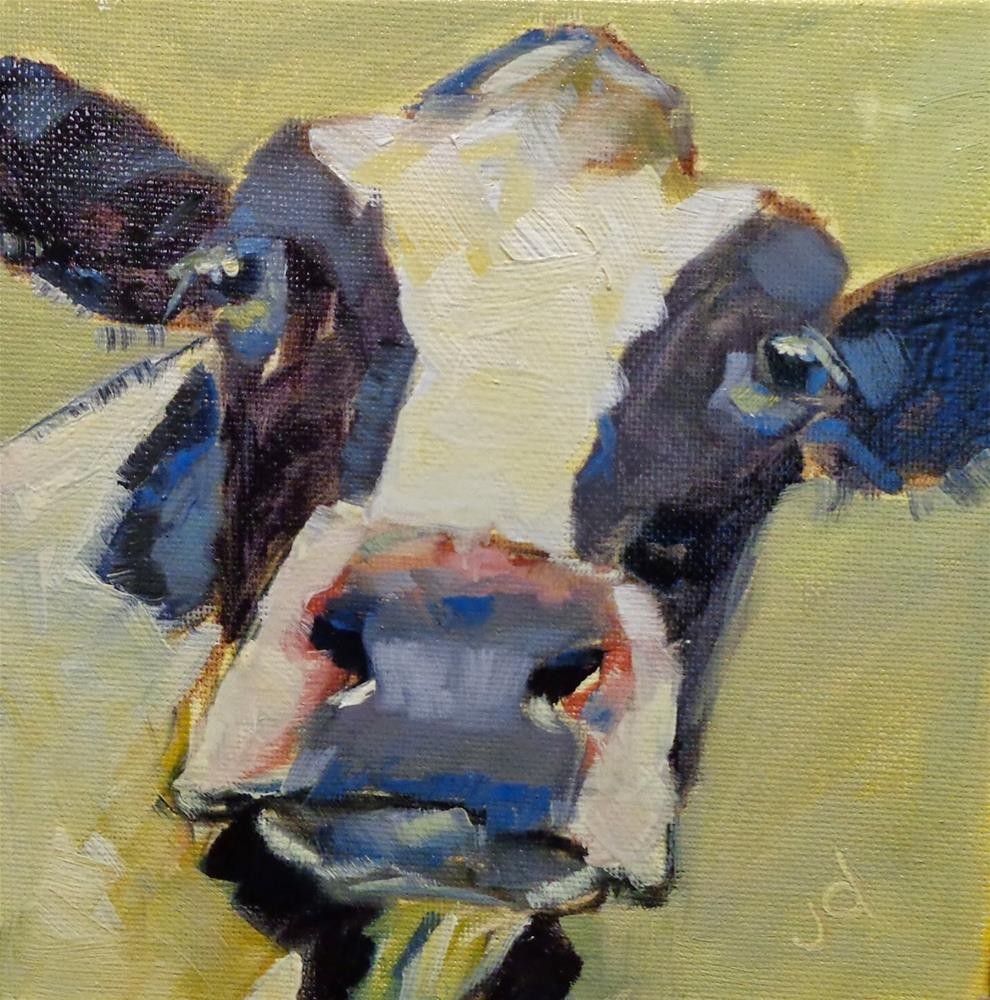 """Cow 22...What were you thinking?"" original fine art by Jean Delaney"