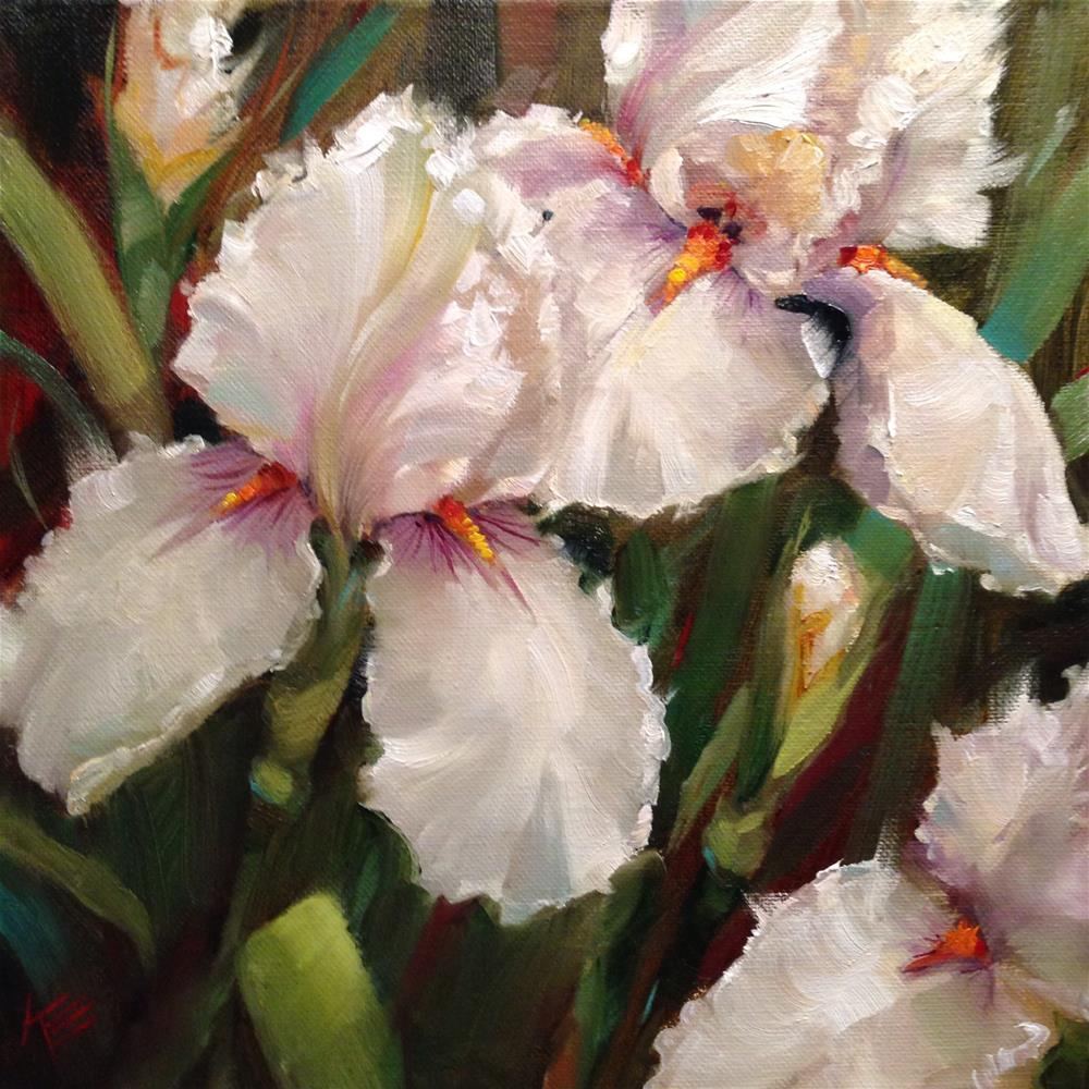 """Bride's Blush - Tall bearded Irises"" original fine art by Krista Eaton"