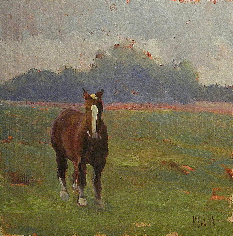 """Horse Amish Farm Shipshewana Daily Oil Painting Heidi Malott"" original fine art by Heidi Malott"