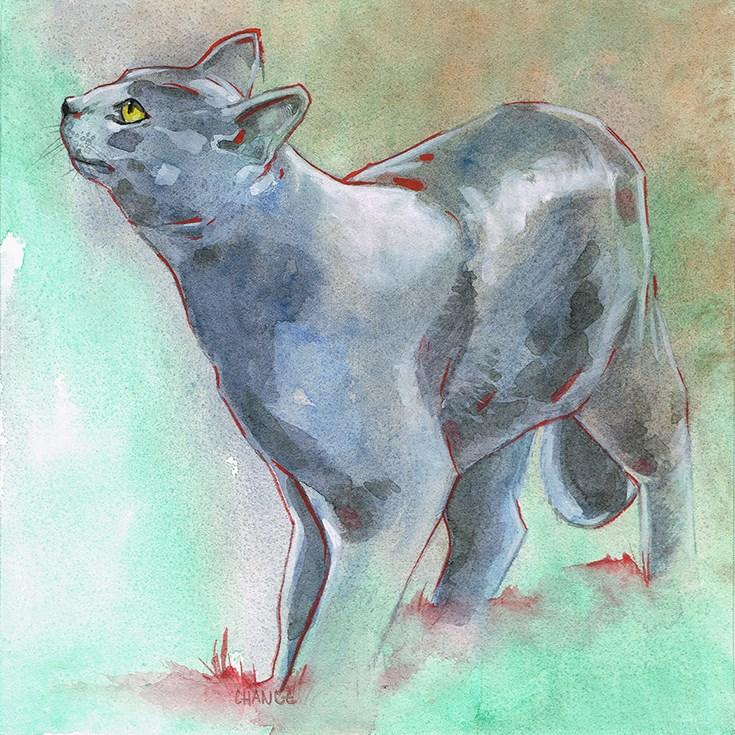 """Gray Cat"" original fine art by Annabel Chance"