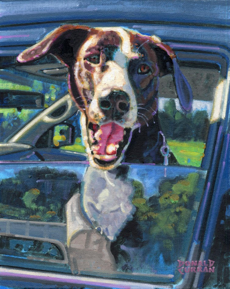 """Doggy in the Window"" original fine art by Donald Curran"