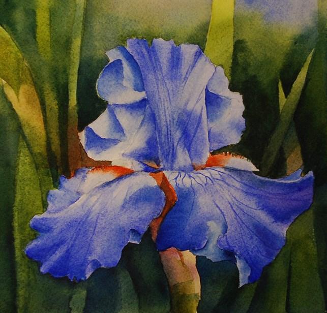 """Nightfall"" original fine art by Mary Anderson"
