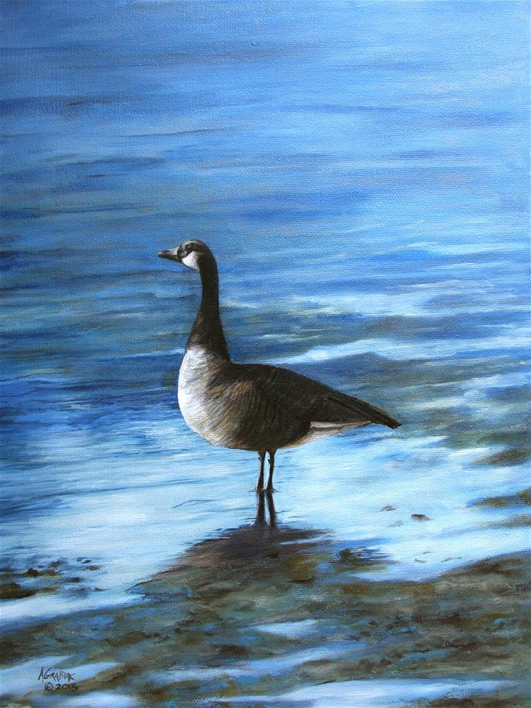 """Canada Goose"" original fine art by Aaron Grabiak"