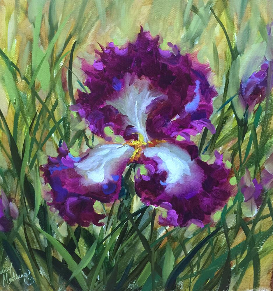 """Ruby Dancer Iris Solo and a Live Facebook Video Event"" original fine art by Nancy Medina"