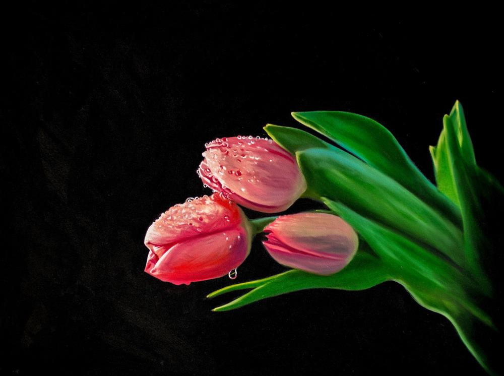 """Tulip Dew Drops"" original fine art by Lauren Pretorius"