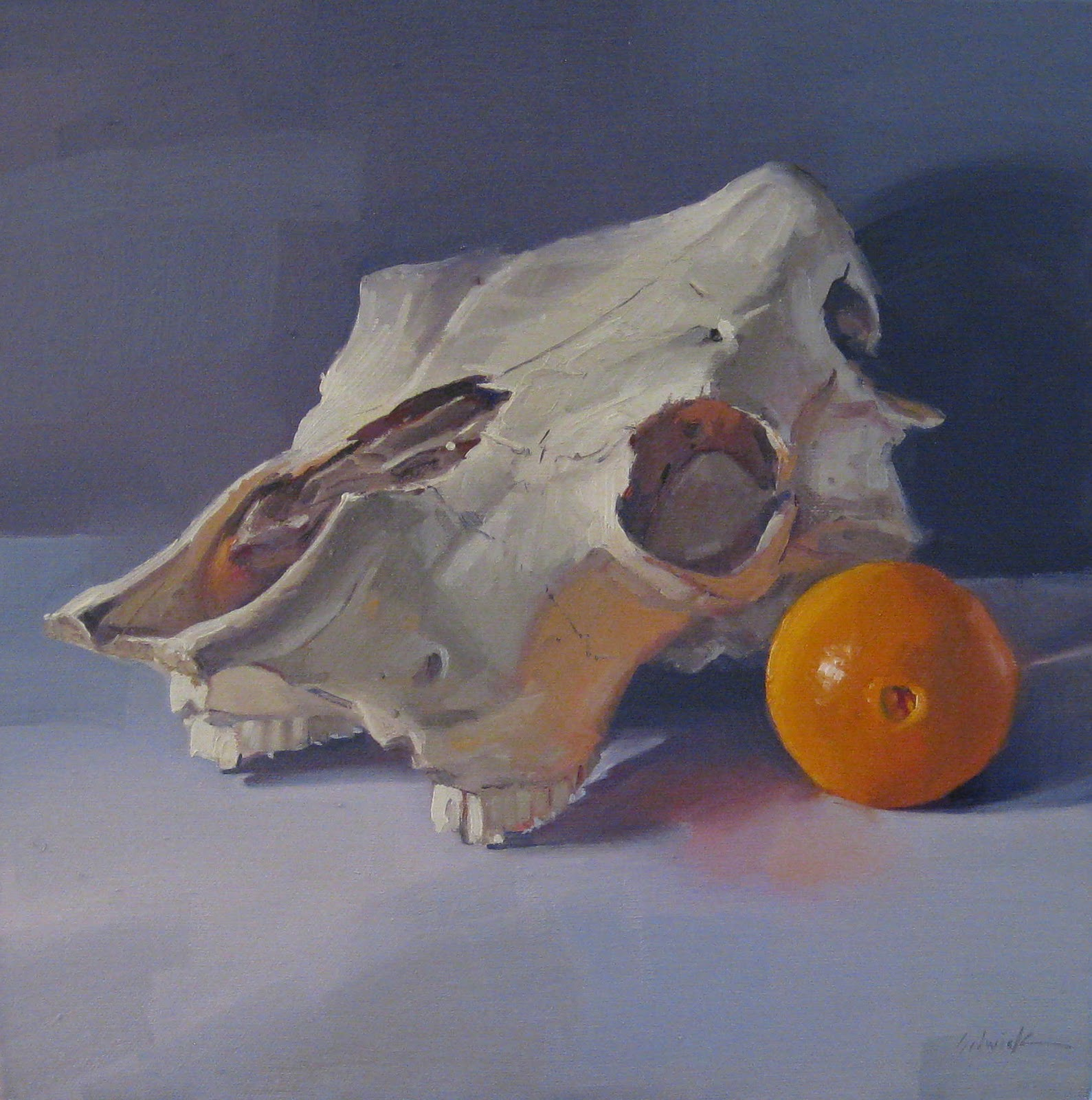 """Cow Skull and Orange"" original fine art by Sarah Sedwick"