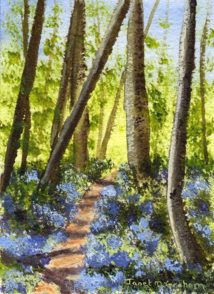 """Bluebell Pathway ACEO"" original fine art by Janet Graham"