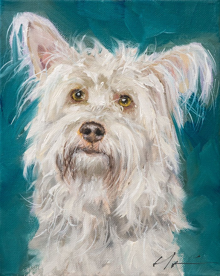 """PAINT MY DOG - Sailor"" original fine art by Clair Hartmann"