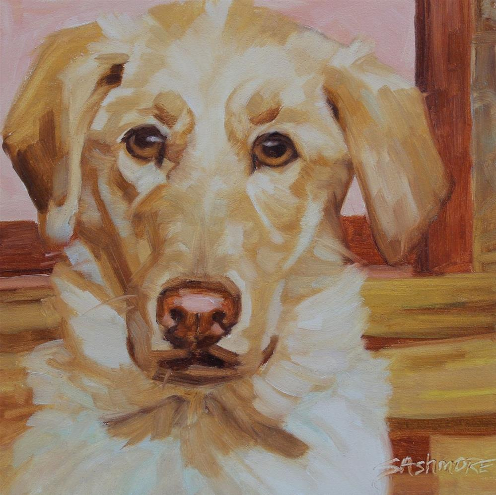 """Cleo"" original fine art by Susan Ashmore"